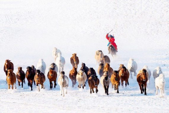 """Snow Horseman:"" A winter shot from Mongolia. Photo: Zay Yar Lin @zayyarlin, Myanmar - Agora"
