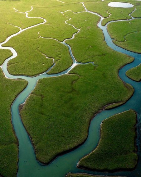"""Veins of earth:"" The Amazon-like shot was taken in East Sussex, England, where the Cuckmere River ... [+] Photo: Hugo Healy @hugohealy, UK - Agora"