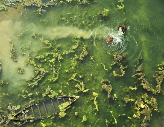 Время купания, Апратим Пал, Индия. Два пловца наслаждаются водой в Западной Бенгалии, Индия. Третье место в категории «люди и природа»